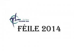 Féile 2014